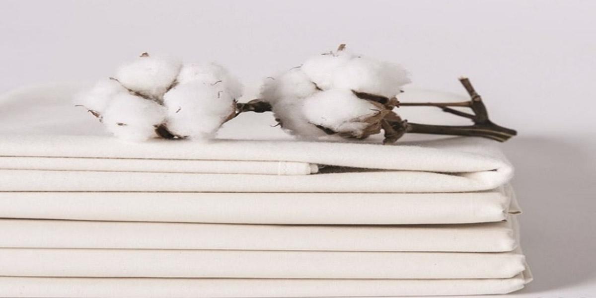 Vải cotton 100% khá cứng cáp